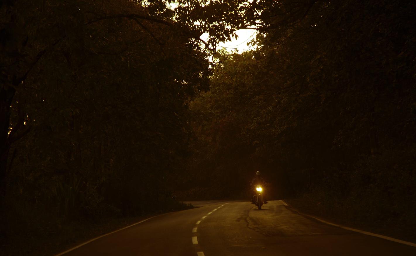motocyklista na krętej leśnej drodze o zmierzchu